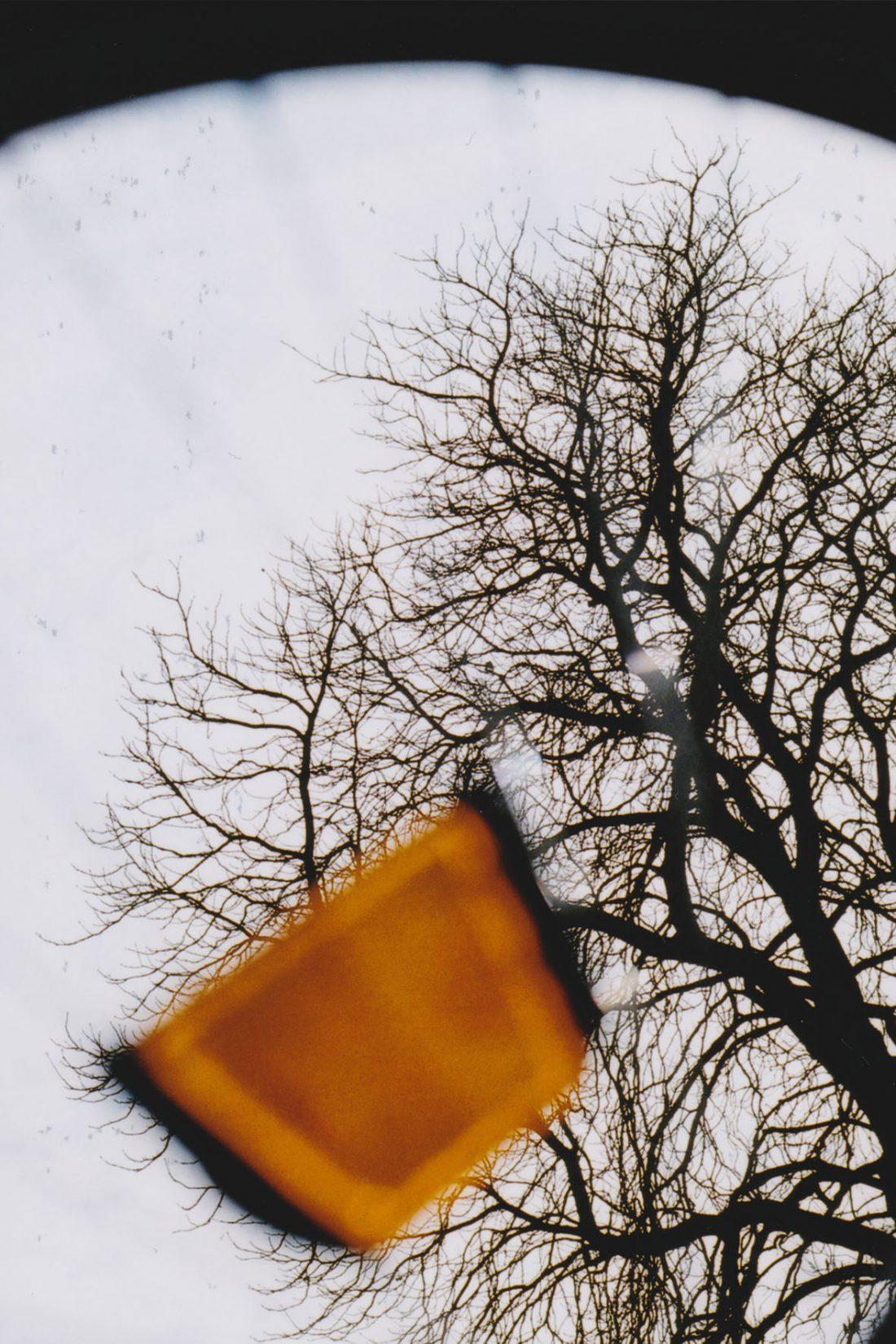 Analoge Fotografie - Mein erster Film